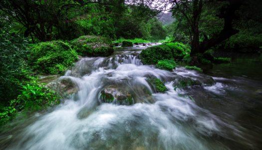 KHAREEF SEASON LUXURY: VISIT SALALAH AND CHOOSE ANANTARA