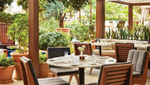 Alba Terrace's All Day Brunch at the Abu Dhabi EDITION Hotel